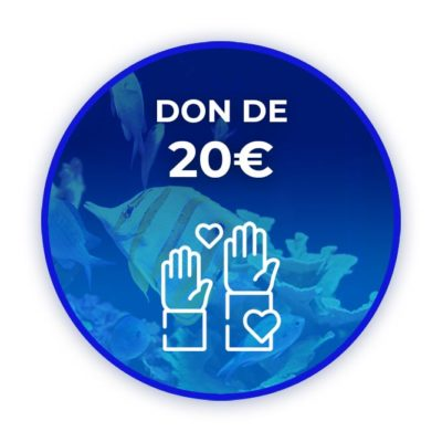 Donation de 20 euros