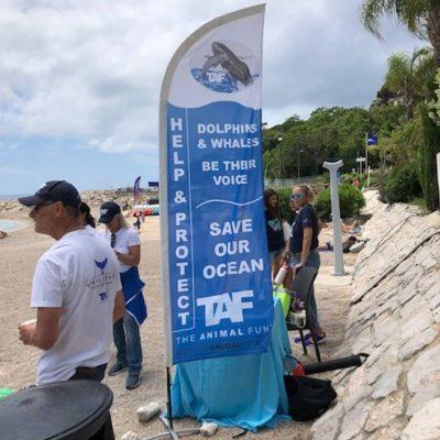 Association-du-Musee-oceanographique-monaco-benevoles8